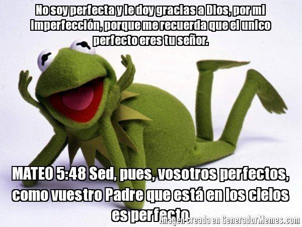 No soy perfecta y le doy gracias a Dios, por mi imperfecci�n, porque me recuerda que el unico perfecto eres tu se�or. MATEO 5:48 Sed, pues, vosotros perfectos, como vuestro Padre que est� en los cielos es perfecto - La rana Rene