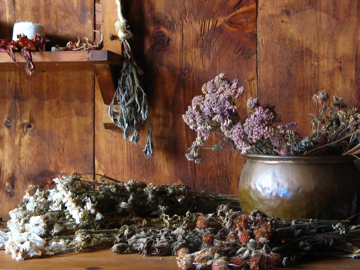 17 Best images about Drying Herbs on Pinterest Hanging