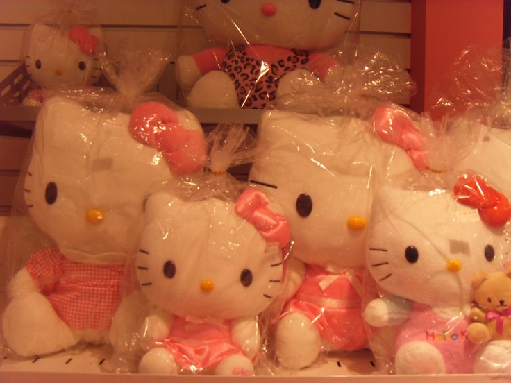 2016.2.19. Hello Kitty dolls at the bookstore. Today learned many book titles with authors and content indexes. Also saw Prof. Bae's newest books.