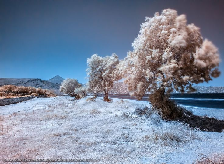 Tutorial: post-processing infrared photos ~ http://hdrphotographer.blogspot.com/2013/08/tutorial-post-processing-infrared-photos.html