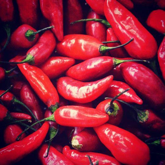 Chilli / Chili / Ají  #learnspanish #learningspanish #deutschlernen #lernendeutsch #learningenglish #learnenglish #español #fruits #vegetables #natur
