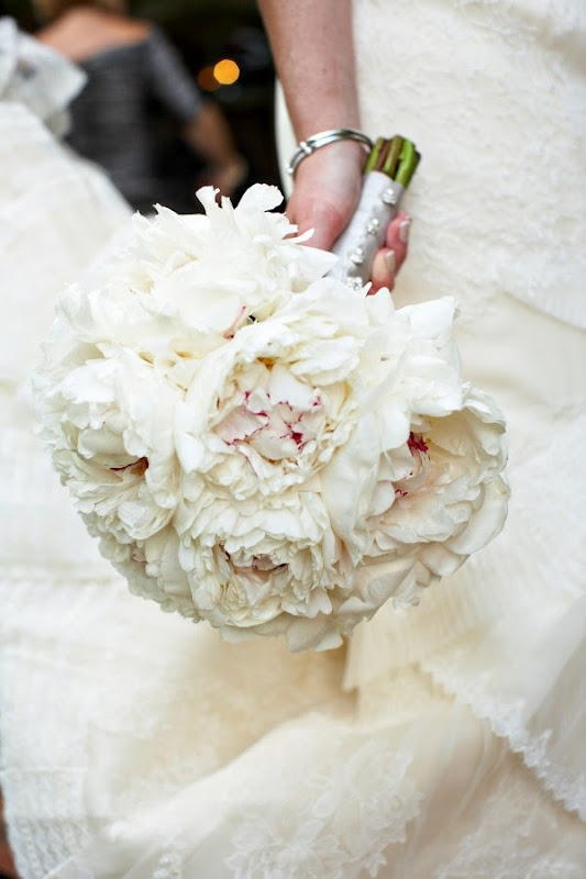 lovely, lovely peonies <3