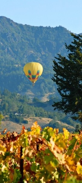Take a hot air balloon ride through #Napa.