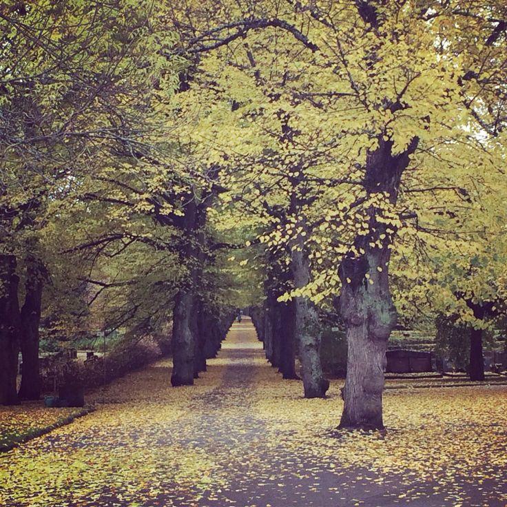 Malmi Cemetery, Finland