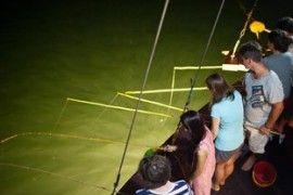 Night fishing of Phoenix Cruise