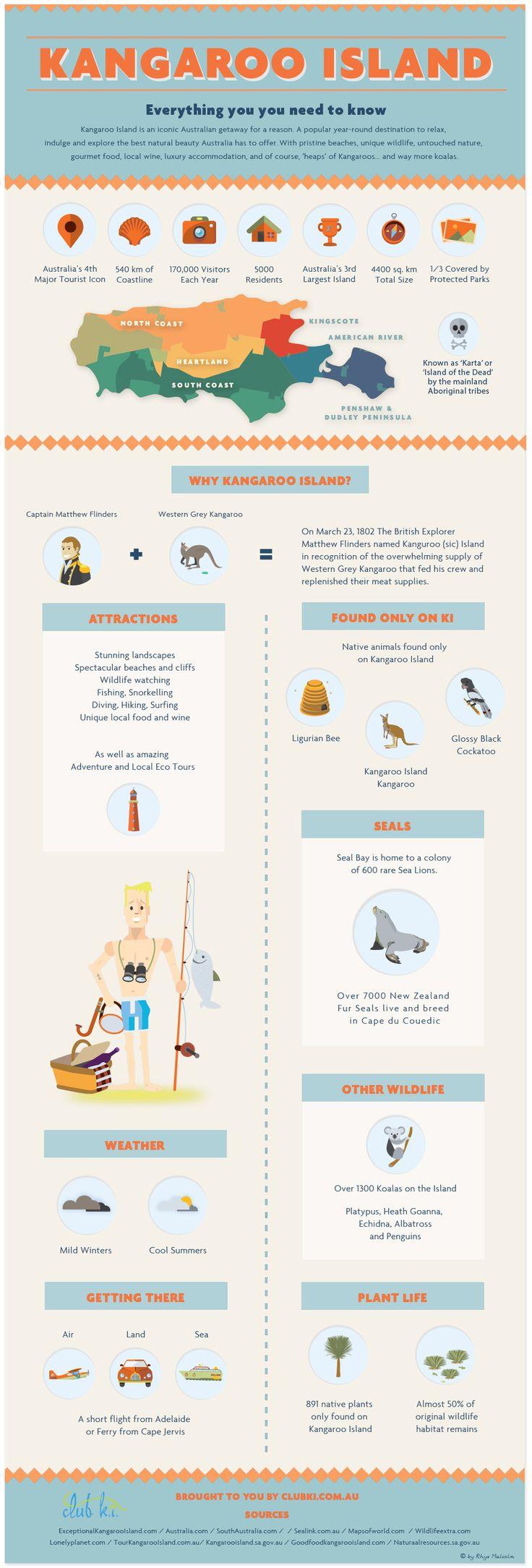 How To Create and Promote an Infographic --> Blog Post coming soon! #KangarooIsland #KangarooIslandInfographic #infographic