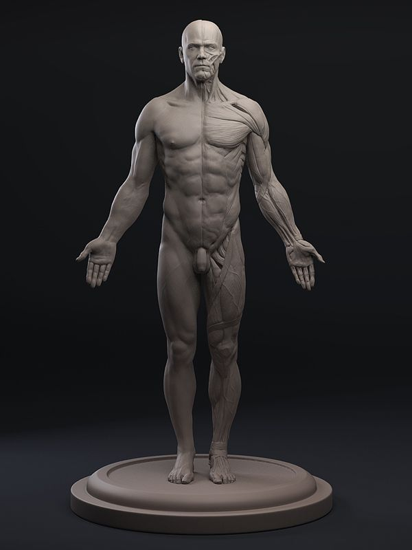 male1.jpg (600×800)