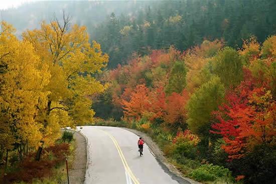 autumn in nova scotia.