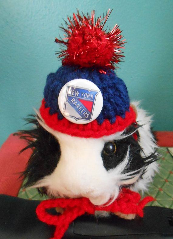 Guinea Pig or Bearded Dragon Sports Team Hats  Tiny by Fancihorse