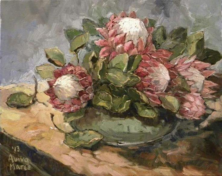 Kom met Proteas   Aviva Maree Art