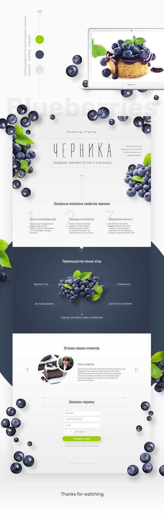 Landing page Blueberries: