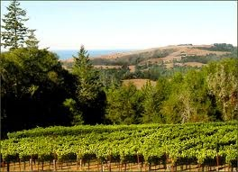 Edna Valley ~ California: Cases Del, Favorite Places, California Dreamin, Wine Tasting, Sonoma Places, Sonoma California