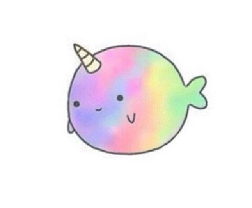 Rainbow Animated Narwhals Most popular tags for ...