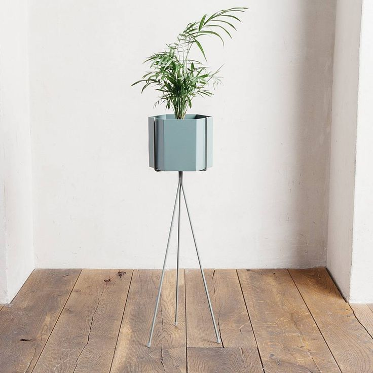 Elegant Ferm LIVING Plant Stand + Hexagon Pot: Https://www.fermliving.
