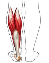 Best Calf Stretch To Relieve Tightness