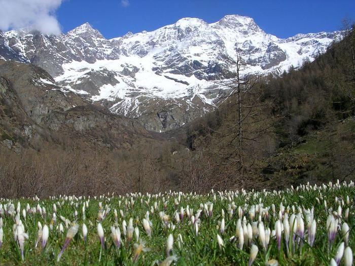 Sesia Val Grande diventa Geoparco Unesco, l'Italia al top in Europa.