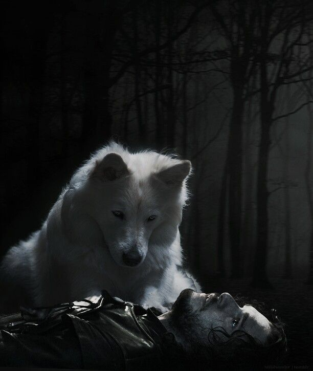 "Game of Thrones: Jon Snow and Ghost. ""Ghost"" he whispered.. Jon's last words from A Dance With Dragons 
