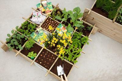 eigen groenten kweken op een vierkante meter tuin! #moestuin