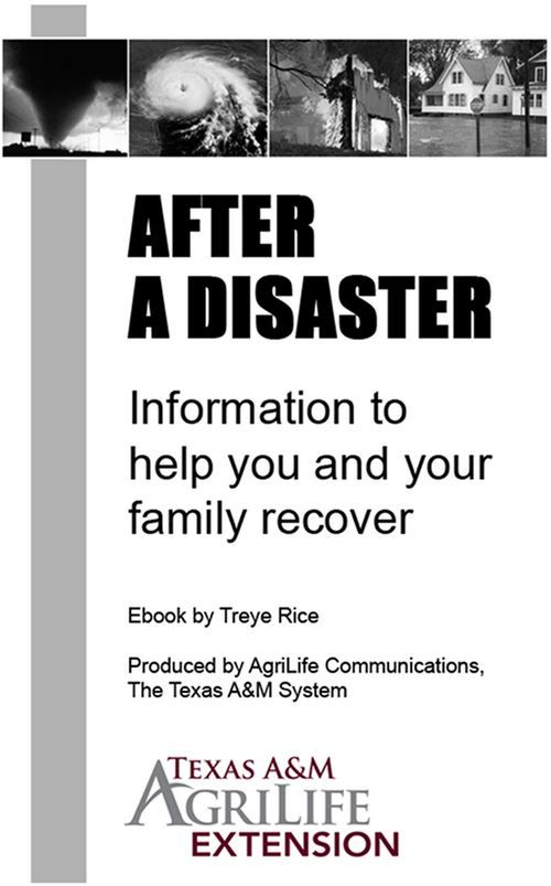 26 best Pins for Parents images on Pinterest Disaster - disaster recovery plan template