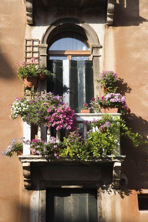 Die besten 25+ Balkonblumen kasten Ideen auf Pinterest Geranien - balkon ideen blumenkasten gelander