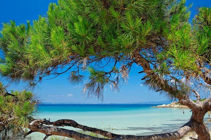 Karidi (nut) beach... Chalkidiki..