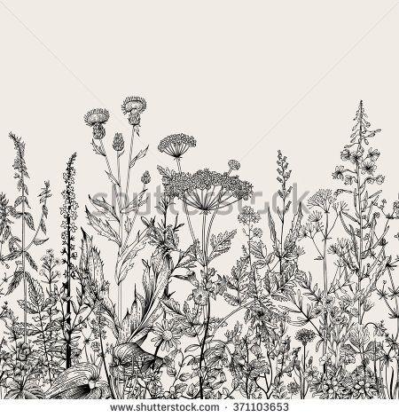 Botanical Stock Vectors & Vector Clip Art | Shutterstock