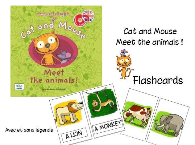 Cat and mouse - Meet the animals - L'école de Crevette
