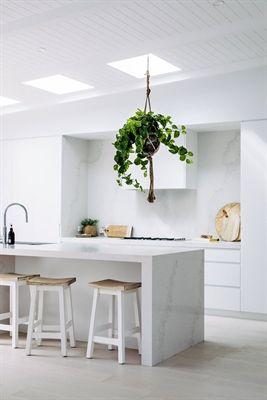 Kitchen Caesarstone Calacatta Nuvo Three Birds Renovations / Carrera By Design / ASC