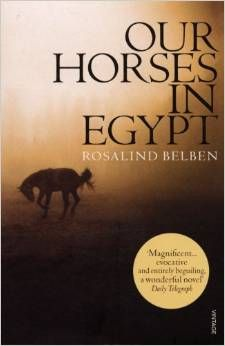 A deeply-moving and well-researched novel about an Englishwoman's search for her beloved horse in post WW1 Egypt.