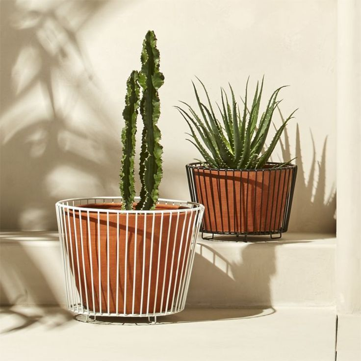 Shop wire and terracotta planters. Natural terracotta gets a modern lift from a cage of metal. A fun contrast of organic and industrial.