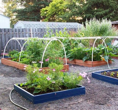 Colored garden boxes watering system botany pinterest for Watering vegetable garden