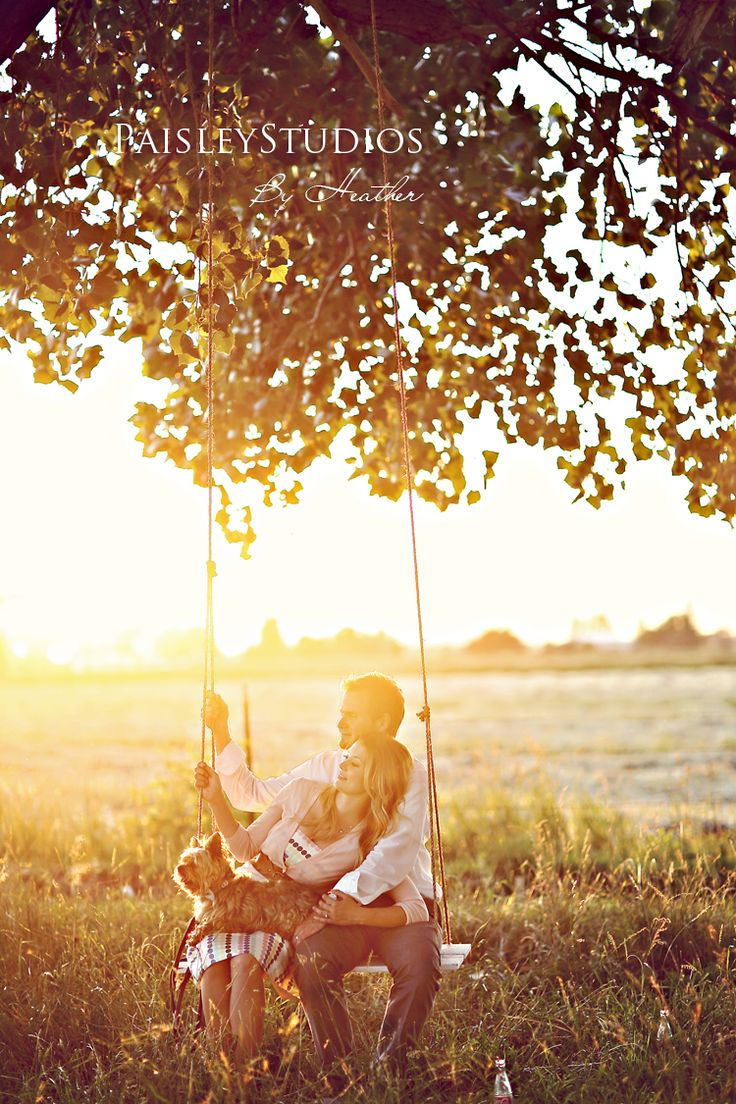 morning, field, swing