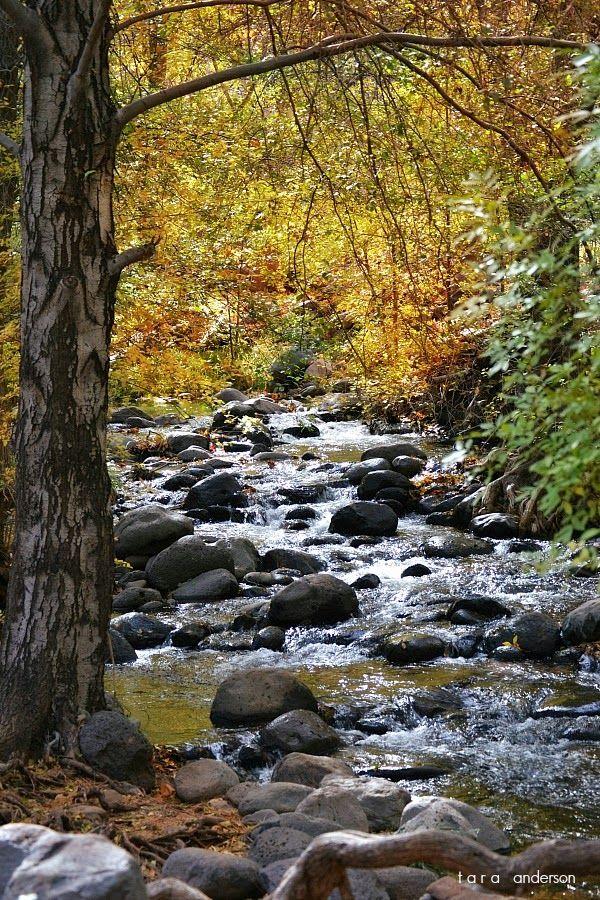 the Huckaby trail, Sedona Arizona