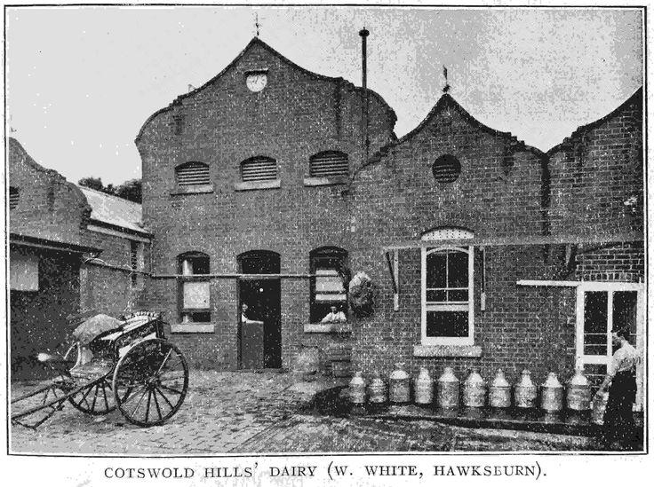 PH 8769. The Cotswold Hills' Dairy (W. White, Hawksburn); c.1911