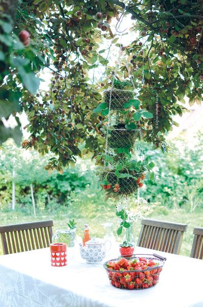 15 pins zu pflanzk bel selber bauen die man gesehen haben muss selber machen pflanzk bel. Black Bedroom Furniture Sets. Home Design Ideas