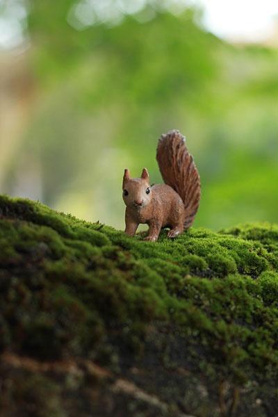 Schleich squirrel in nature. Repinned by Spark Strategic Ideas www.sparksi.com