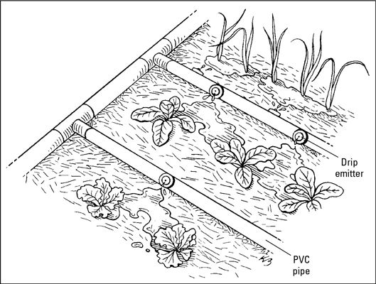 Drip irrigation is the most effective and efficient way to