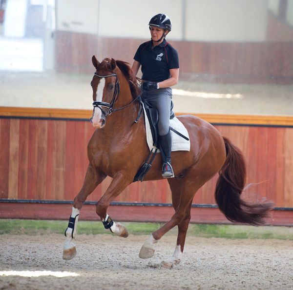 """How do I create more """"jump"""" in my horse's canter?"""