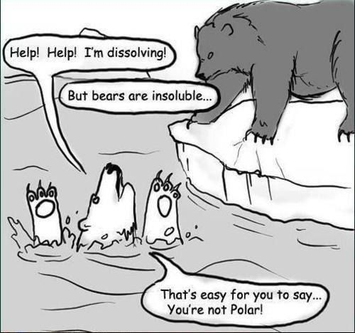 "*""But bears are mostly insoluble in water."" I can think of some acids in which bears would be soluble. Still a cute joke!"