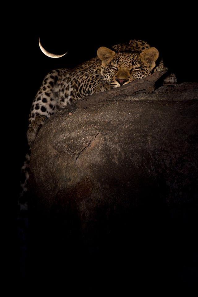 #Moon#La Lune Marius Coetzee photography