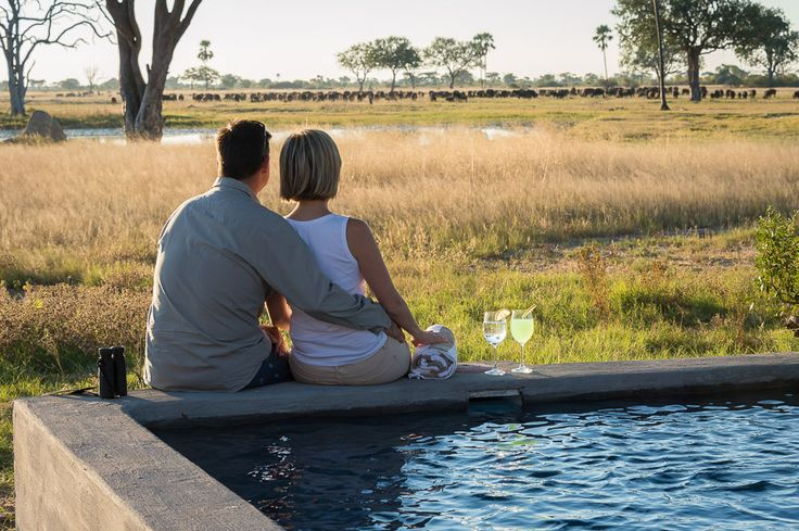 Outstanding game viewing, from the comfort of Linkwasha Camp's main area...