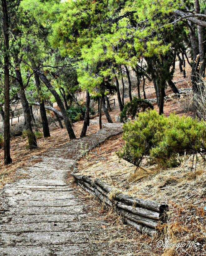 Mount Lycabettus District, Athens, Greece!