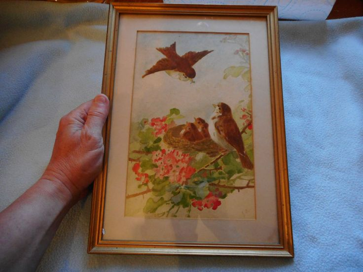 Antique Watercolour Signed J B Sparrow  Nesting With Eggs