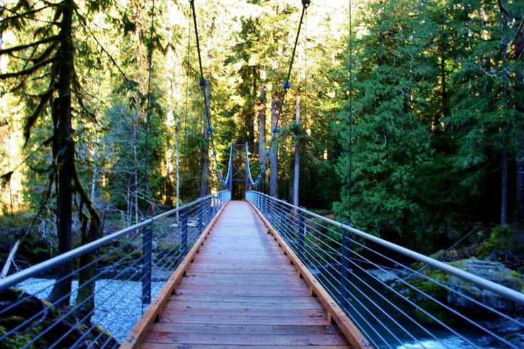 Hike Staircase Rapids Loop Trail, Olympic National Park when visiting Alderbrook Resort & Spa!