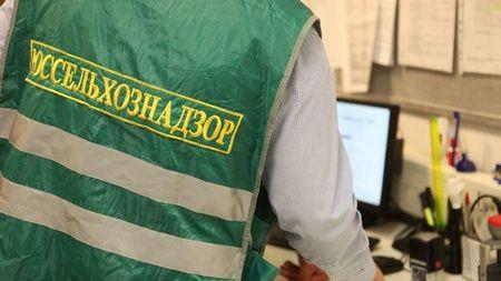 В аэропорту Домодедово Россельхознадзором был задержан груз с рептилиями - Сайт города Домодедово