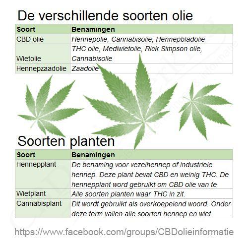 Verschil wietolie, CBD olie, cannabis olie, THC olie en Hennepolie.  Al die namen die voorbij komen en het enige wat je wilt is je niet zo ellendig voelen als nu. Maar wat heb je nodig? Word je er high van? Is het legaal? In dit stuk leggen we uit wat nou de verschillen zijn.  Vaak worden in de media dezelfde termen door elkaar gebruikt en daardoor ziet men door de bomen het bos niet meer.  CBD olie Dit is de olie waar vandaag de dag het meest over gesproken word. Het word gebruikt als…