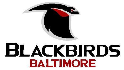 baltimore blackbirds - american indoor football association - 2007
