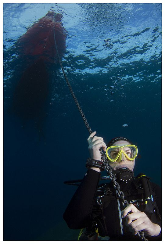 Pulling the boat #diving #underwater #photography #greece #scuba #boatdive #athens