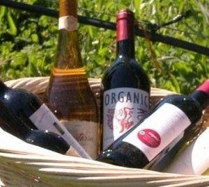 ¿Por qué pagar un poco más por el vino orgánico?