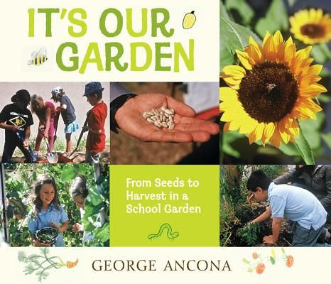 It's Our Garden: From Seeds to Harvest in a School Garden by George Ancona | IndieBound